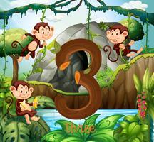 Três, macaco, em, a, selva