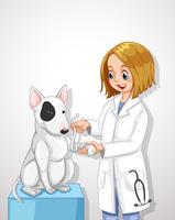 Médico veterinário ajudando um cão vetor