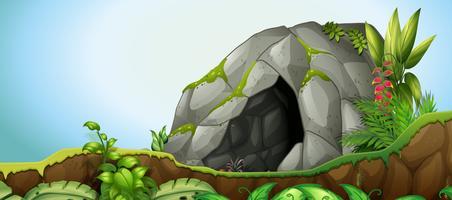 Uma pedra de caverna no fundo da natureza