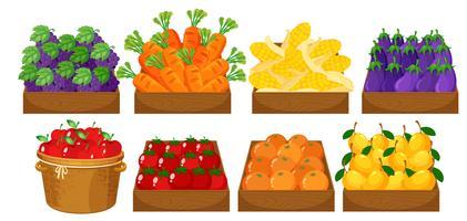 Um conjunto de frutas na cesta vetor