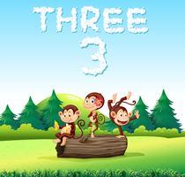 Três, macaco, natureza vetor