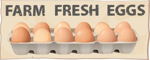Fazenda ovos frescos vetor