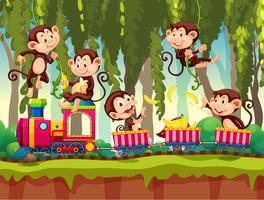 Macaco no trem na selva