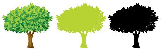 Conjunto de design de árvore vetor