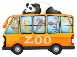 Animais no ônibus vetor