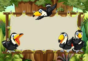 Design de moldura com tucanos voando vetor