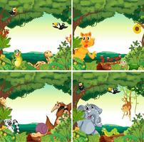 Animais e florestas vetor