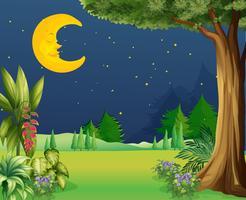 Meia lua dormindo vetor