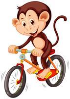 Macaquinho andando de bicicleta vetor