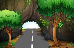Uma estrada sob a caverna