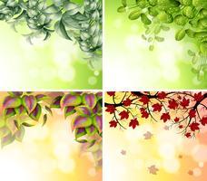 Quatro desenhos de bordas