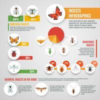 Conjunto de infográfico de insetos vetor