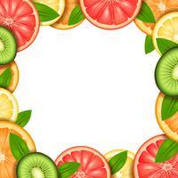 Ilustração de moldura de fruta vetor