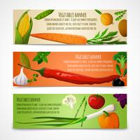Banners horizontais de legumes