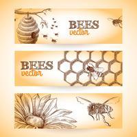 Esboço de banner de abelha vetor