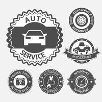 Conjunto de serviço de automóvel