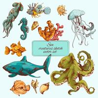 Esboço de criaturas do mar colorido vetor