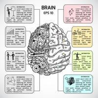 Hemisférios cerebrais esboçar infográfico vetor