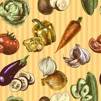 Padrão sem emenda de cor de esboço de legumes