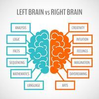 Infografia de hemisférios cerebrais
