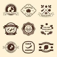 Conjunto De Etiquetas Vegetais