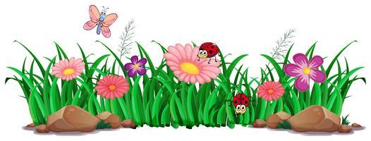 Flor e grama para decoração vetor