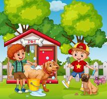Meninos estão banhando seus cães