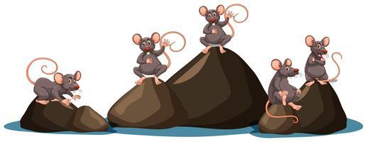 Um conjunto de rato no fundo branco vetor
