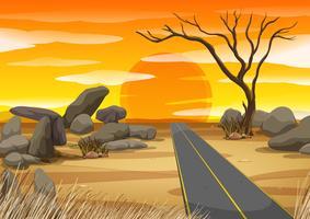 Estrada vazia no deserto ao pôr do sol
