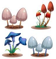 Um conjunto de cogumelo venenoso vetor