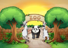 um zoológico e os animais vetor