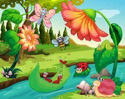 Muitos insetos que vivem no rio vetor