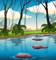 Uma bela paisagem do lago vetor