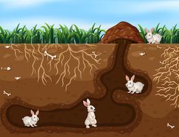 Família de coelho vivendo no buraco vetor