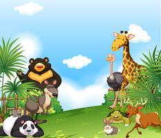 Cena de fundo com animais selvagens no campo vetor