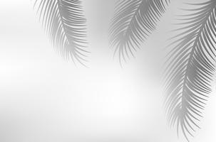 sombra de folha de palmeira vetor