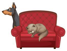 Gato bonito e cachorro no sofá vetor