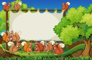 Esquilos e placa no parque vetor