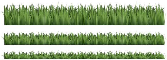 Plano de fundo sem emenda para grama verde vetor