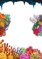 Modelo de fronteira com recifes de corais debaixo d'água vetor