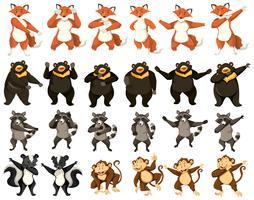 Conjunto de animais dançantes vetor