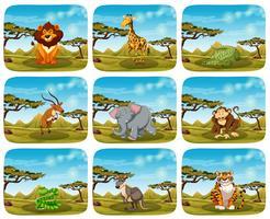 Conjunto de animais diferentes em cenas vetor