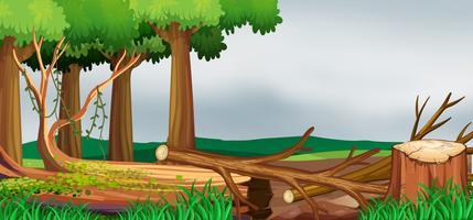 Cena com floresta e madeiras picadas vetor