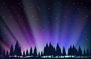 Cena noturna, com, árvores, e, estrelas vetor
