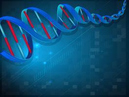 Um DNA vetor