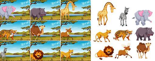 Conjunto de animais selvagens na natureza vetor