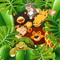 Muitos tipos de animais no mato vetor