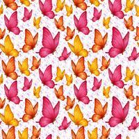 Padrão sem emenda de borboletas vetor