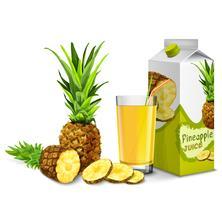 Conjunto de suco de abacaxi vetor