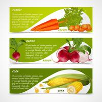 Banners de cenoura rabanete de milho